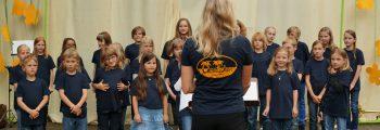 Serenade des Gesangvereins
